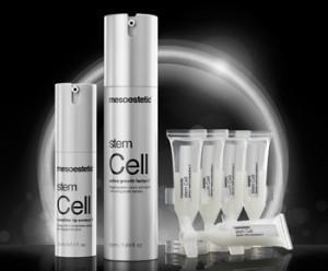 Komórki macierzyste Stem Cell